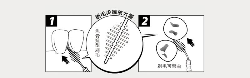 牙籤-刷毛尖端